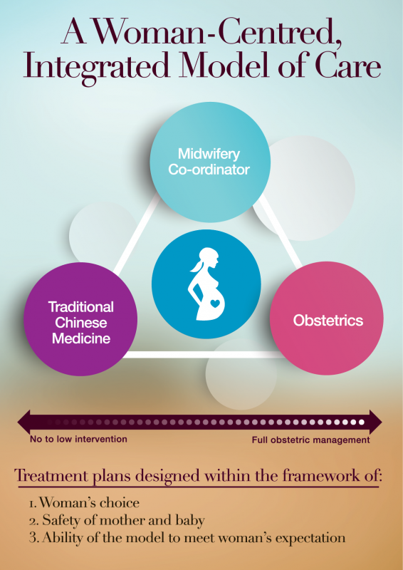 model-of-care-diagram